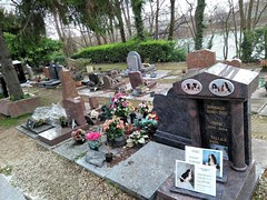 RIMBAUD (marsupilami92) Tags: frankreich france îledefrance 92 hautsdeseine asnièressurseine cimetière îlerobinson