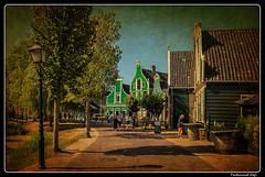 Zansee Schans_Netherlands (ferdahejl) Tags: zanseeschans netherlands dslr canondslr canoneos800d