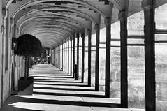 Place des Vosges2 (Franck gallery) Tags: paris nb bw shadows ombres colonnes perspective people personnes gens d90