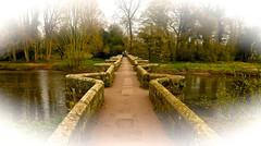 ESSEX BRIDGE (chris .p) Tags: shugborough essexbridge staffordshire nikon d610 bridge capture river spring 2019 crossing trees water march tree rivertrent path history england uk view