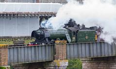 Flying Scotsman 6th October 2018 #3 (JDurston2009) Tags: royalalbertbridge saltash train steamtrain flyingscotsman 60103