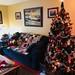 2018-12-22  Eagerly awaiting Santa's arrival  🎅🎄🌟