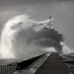 Storm #2 (ludovicbecker) Tags: tempête storm lehavre vague spirale port harbour asbeautifulasyouwant lh vagues waves challengegamewinner beginnerdigitalphotographychallengewinner goéland seagull
