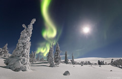 Merry Christmas (Mikko Lönnberg) Tags: suomi sky scenery winter wonderland auroras auroraborealis arcticlights arctic aurora night northernlights nightscape nightphotography nationalpark mikkolönnbergphotography muonio moon landscape lights lapland lappi