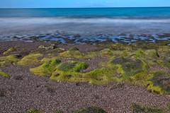 AB3I0032A (Aaron Lynton) Tags: lyntonproductions maui hawaii paradise drone andaz stouffers kihei aerial beach mauihawaii mauidrone mauibeachdrone reef mauiaerial mauiaerialbeach dji mavic mavicpro djimavic djimavicpro