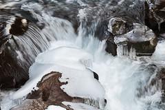 Dettagli ghiacciati (cesco.pb) Tags: valleaurina torrente rioaurino sudtirol altoadige alps alpi ghiaccio ice canon canoneos60d tamronsp1750mmf28xrdiiivcld montagna mountains italia italy