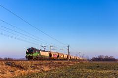 ecco-rail 193 242, Nickelsdorf (Paha Bálint) Tags: ell br193 eccorail ecco siemensvectron vectron güterzug austria freighttrain train