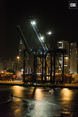 Antillas del caribe (Ciskø) Tags: photographie photography fotografia animales birds colombia nature digitalhphotography light people town sea cartagena caribbeansea ships cruiser crucero noche composition composicion figures forms abstract portraits colors colores