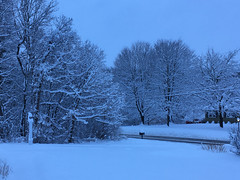 Winter Wonderland (lwgeiger) Tags: woodstock connecticut unitedstatesofamerica us