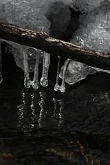 Ice (historygradguy (jobhunting)) Tags: easton ny newyork upstate washingtoncounty ice water reflection
