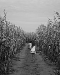 Girls running through Corn (annemconnor@yahoo.com) Tags: agriculture anonymous back barefoot children corn farm girls kids maze migrant nature outside running runningaway