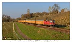 Re 420 162 Poste - Crans-Prés-Cèligny (CC72080) Tags: re420 re44 cff sbb ffs poste zug train treno güterzug cargo locomotive lokomotive locomotiva bobo cranspréscèligny
