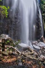 Bottom of Blackfellow Falls (Tatters ✾) Tags: australia brisbane springbrook nationalpark waterfalls longexposure