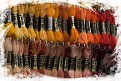 Shades (Audrey A Jackson) Tags: canon60d bath city shop cottons colour shades bright