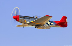 Mustang (EverydayTuesday) Tags: p51 p51d mustang rollsroyce merlin v12 reno nevada stead renoairraces canon 80d 100400