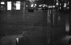 201809xx Dubbelexponering med Lena Källberg - Canon f1n - 50mm 1.4 fd - street candy 400 atm (Sina Farhat - Webcoast) Tags: light ljus höst autumn fall gothenborg göteborg sweden sverige home hemma 031 bokeh skärpedjup 35mm raw lightroomclassiccc analog film positiv dubbelexponering doubleexposures blackandwhite svartvit stockholm lenakällberg dslrscanned