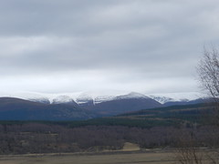 The Cairngorms from the Highland Wildlife Park, Kincraig, Mar 2019 (allanmaciver) Tags: allanmaciver highland wildlife park kincraig cairngorms snow view scenery beautiul raw day grey clouds cold viewpoint