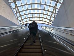 Up Escalator in Washington, DC (` Toshio ') Tags: toshio washingtondc districtofcolumbia dc man escalator pattern underground stairs subway commuter iphone morning usa america