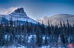 Roadtrip 8 (Kasia Sokulska (KasiaBasic)) Tags: canada alberta winter rockies travel mountains nature jasper np landscape
