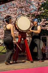 CherryBlossomDC2019-676.jpg (carlton.colter) Tags: kizuna cherryblossomdc taiko taikotakeover sakurataikofest washington dc usa