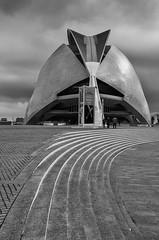 Palau de les Arts Reina Sofia (ORIONSM) Tags: palaudelesartsreinasofia opera arts valencia blackandwhite monochrome building architecture clouds spain panasonic lumix tz100