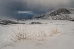 Stormy day at Filefjell (hanschristian_nielsen) Tags: norge skiferie filefjell norway otrøvatnet mountain sky cloud lake snow winter straw nystuen gamlestøgofjellet gamlestøgo