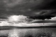 Albufera - Monocrom (rossendgricasas) Tags: monocrom monochrome bw bn clouds water valència photography photoshop nikon