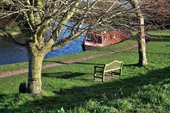 Bench Monday (standhisround) Tags: trees canal canalbarge narrowboat benchmonday bench seat grass startopsend hbm park towpath england hertfordshire uk waterways water boat