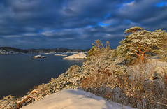 Hove 24mm (Roar Frich Vangdal) Tags: hdr winter snow trees sea hove tromøy arendal austagder agder norway