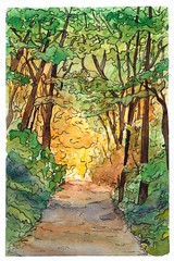 Sunlit Forest Path (With Ink) (alisonleighlilly) Tags: watercolor ink painting landscape nature sketch expressionist impressionist loose forest trees autumn spring sunlight