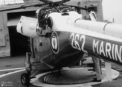 XZ 262 - Westland Lynx WG 13 (Laurent Quérité) Tags: canonfrance canonae1 noirblanc blackwhite helicoptere aviation aéronef aéronavale aéronautiquenavale frenchnavy marinenationale militaryaircraft xz262 westland lynxwg13