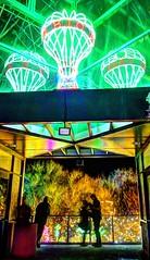 BioPark Balloon Kiss (JoelDeluxe) Tags: rol riveroflights abq biopark nm december 2018 albuquerque biological park pnm light display colors lights sculptures fantasy newmexico hdr joeldeluxe