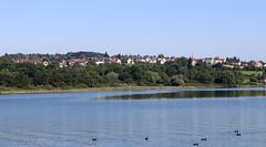 Vacances_0799 (Joanbrebo) Tags: bodensee llac lago lake lac konstanz badenwürttemberg de deutschland canoneos80d eosd efs1855mmf3556isstm autofocus