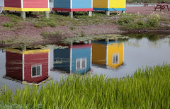 Pond Sheds (peterkelly) Tags: digital canon 6d northamerica canada newfoundlandlabrador cavendish beach sheds shed reflection green yellow blue red pond picnictable