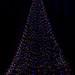 Christmas Tree -- Longwood Gardens (PA) December 2018