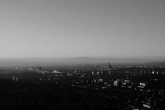 Basilea 1 (Dominik Dober) Tags: xpro2 35mm canonfd fd tiltshift basel city landscape tower bnw acros