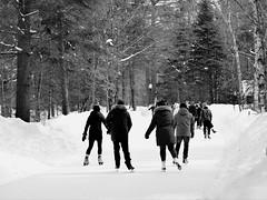Ice skating (mrsparr) Tags: theflickrlounge saturdaytheme arrowheadprovincialpark ontario canada