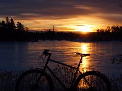 2019 Bike 180: Day 41, February 28 (olmofin) Tags: 2019bike180 finland bicycle polupyörä sunrise aurnginnousu seurasaari jää ice mzuiko 45mm f18