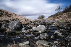 The meandering and rocky West Dart river, next to Wistman's Wood. (Doddstar) Tags: 1655f28 xt3 fujifilm fuji longexposure wistman'swood dartmoor devon gobefilters