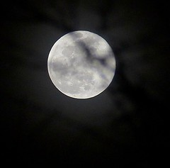 Super Snow Moon (CaptJackSavvy) Tags: supersnowmoon supermoon moon fullmoon astrophotography astro nightphotography night nightscenes