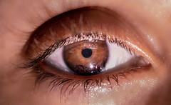 (Stephanny Monteiro) Tags: eye eyelashes iris pupil pupila íris olho cílios focus macro nikond3300 nikon d3300 55mm nikkor close up lights shadows castanho bright brilhante luz sombras soe