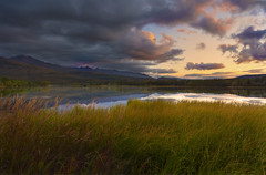 Sundown in Alaska (lgflickr1) Tags: alaska vacation travel texture water reflection outdoor outdoors orange blue brown clouds pink peaceful mountains lowlight landscape lake lagoon denali denalinationalpark golden highgrass grass nikon nikkor d750 trees national park