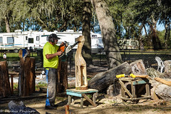 190101 DSC02220 (Dr Dapper) Tags: woodcarving chainsaw redoaks bushnell florida