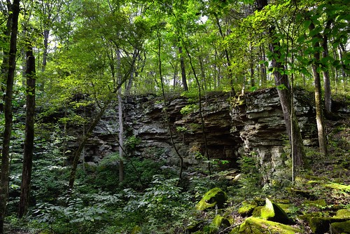 Limestone Cliffs Along a Sinkhole Area While Walking the Turnhole Bend Nature Trail