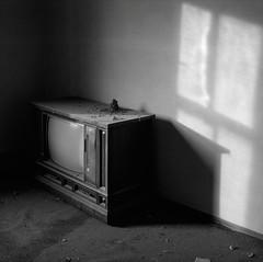 Television with Bird's Nest, Abandoned Farmhouse, Eastern Washington (austin granger) Tags: tv television nest abandoned vacant birdsnest window evidence time impermanence washington palouse film square gf670