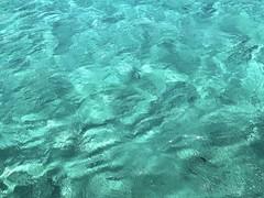 Aquamarine texture_IMG_1916i2 (AchillWandering) Tags: texture sea water seawater greece seascape island outdoor aegian mediterranean beach sand sandy seaside wave shore nature naturephotography color aqua aquamarine blue white bluegreen foam green sun light beautiful