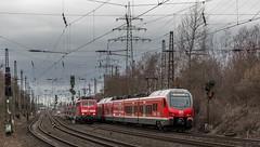 51_2019_02_08_Gelsenkirchen_Almastr_6111_155_DB_RE42 ➡️ Münster_1428_014_&_0513_DB_RE42 ➡️ Mönchengladbach (ruhrpott.sprinter) Tags: ruhrpott sprinter deutschland germany allmangne nrw ruhrgebiet gelsenkirchen lokomotive locomotives eisenbahn railroad rail zug train reisezug passenger güter cargo freight fret schalkerverein almastrasse abrn brll ctd db de erb rpool 403 0275 0422 0648 1223 1232 1428 3294 6101 6111 6146 6185 6193 ec9 re2 re3 rb46 s2 siemens vectron outdoor logo natur graffiti