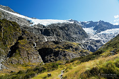 20190207-25-Rob Roy Glacier (Roger T Wong) Tags: 2019 nz newzealand robroyglacier rogertwong sel24105g sony24105 sonya7iii sonyalpha7iii sonyfe24105mmf4goss sonyilce7m3 southisland westmatukitukivalley bushwalk glacier hike landscape outdoors tramp trek walk