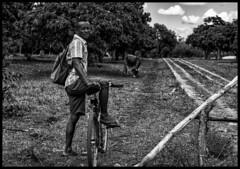 Madagascar people / Люди Мадагаскара (dmilokt) Tags: чб bw черный белый black white портрет portrait dmilokt