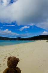 Photo (Adventures With Teddy) Tags: teddy adventures with photographers tumblr original whitehaven beach travel australia blog international bug bear withteddy adventureswithteddy sand white nature photography sailboat got finger oops